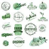 Aufkleber und Ausweise des biologischen Lebensmittels Lizenzfreies Stockfoto