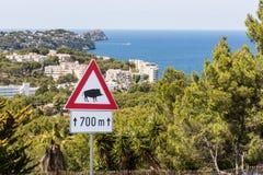 Aufmerksamkeit - Eber - Verkehrszeichen, Spanien, Europa stockfotografie