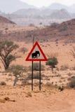 Aufmerksamkeits-Elefanten Stockfotografie