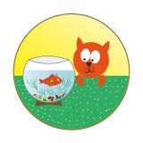 Aufpassende Fische der Katze in einem Aquarium stock abbildung