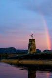 Aufpassender Regenbogen der Seemöwe Stockfotografie