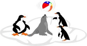 Aufprallende Kugel des Seelöwes weg der Wekzeugspritze mit Freunden. Lizenzfreie Stockfotografie
