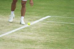 Aufprallende Kugel des Tennisspielers Lizenzfreie Stockfotos