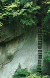 Aufrechte Treppe in Huangshan-Park Stockfotografie