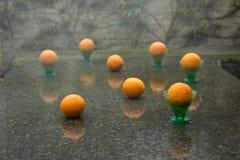 Aufregender Regenguß und acht Orangen Lizenzfreies Stockbild