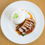 Aufruhr-Fried Crispy Pork Red Curry-Paste Stockbild