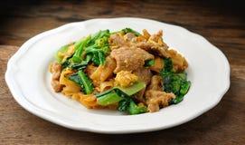 Aufruhr Fried Rice Noodle Lizenzfreie Stockbilder