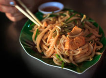 Aufruhr Fried Rice Noodles mit Huhn Lizenzfreies Stockfoto