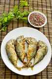 Aufschlag der Garnelenpaste-Paprika-Soße (Nam Prik Ka Pi) mit Fried Indi Stockfotografie