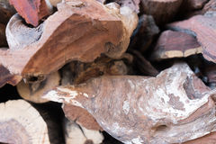Aufschnittbauholz angehäuft für Gebrauch als Brennholz Stockfoto