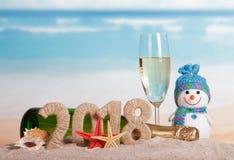 Aufschrift 2018 des neuen Jahres, Flasche und Glas Champagner, snowma Lizenzfreie Stockfotografie