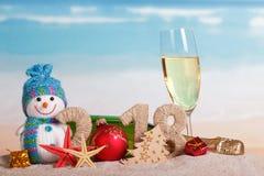 Aufschrift 2018 des neuen Jahres, Flasche und Glas Champagner, snowma Stockfoto