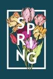 Aufschrift-Frühling auf Hintergrund mit der gezeichneten Hand blüht Stockbilder