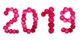 Aufschrift 2019 von der frischen rosa und roten Rose blüht stockbild