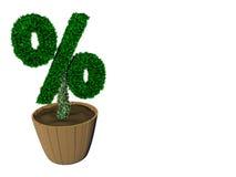 Aufspeicherung von Zinsen Lizenzfreie Stockbilder