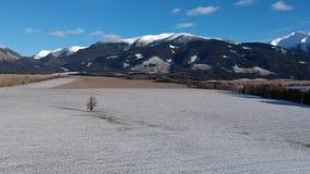 Aufsteigen über Winterland stock footage