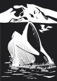 Auftauchendes Wasser Schwarzweiss-Wal ` s Kopfes Stockbilder