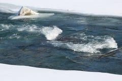 Auftauen des Eises auf dem Fluss im Vorfrühling Stockfoto