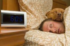 Aufwachen von einem profunden Schlaf Lizenzfreie Stockbilder