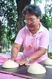 Nowotwór piersi demonstracja Zdjęcia Royalty Free