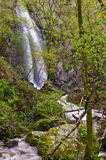 Auga Caida Waterfall, Ferreira de Panton, Lugo, Spain. Aguianza River  falls 40m a few meters before flowing into Miño River Stock Images