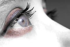 Auge Lizenzfreie Stockbilder