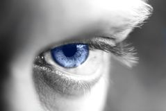 Auge Stockbild