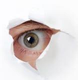 Auge, das durch ein Loch schaut Stockfotografie