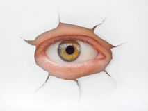 Auge, das durch Loch auf Papier schaut Lizenzfreie Stockfotografie