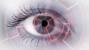 Auge, das numerische Information ansieht Stockbilder