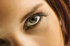 Auge der Frau. Lizenzfreie Stockbilder