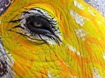Auge des gemalten Elefanten Lizenzfreies Stockfoto