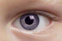 Auge des Jungen Lizenzfreies Stockbild