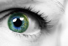 Auge einer Frau mit farbiger Pupille lizenzfreie stockbilder