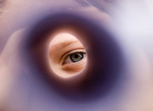 Auge eines Mädchens lizenzfreies stockfoto