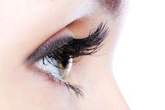 Auge mit den falschen Wimpern einer langen Rotation stockfoto