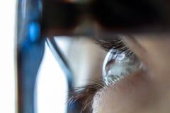 Auge und Wimpern Stockfotografie