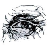 Auge (Vektor) Stockfotografie