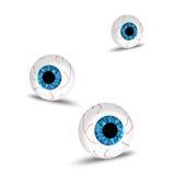 Augen Stockbilder