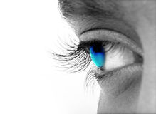 Augen stockbild