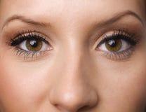 Augen mit langen Peitschen lizenzfreie stockfotografie