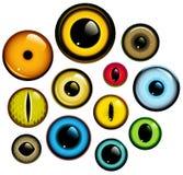 Augen-Set Stockbilder