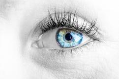 Augen und lange Wimpern Stockfotografie