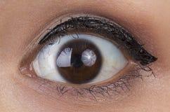 Augen von Frauen. Stockbild
