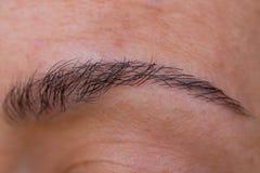 Augenbraue stockfotografie