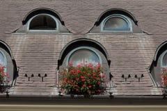 Augenbrauenfenster in Ungarn Stockbild