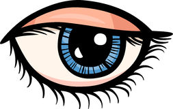 Augenclipart-Karikaturillustration Stockfoto