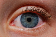 Augendetail lizenzfreie stockfotografie