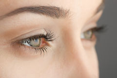 Augennahaufnahme der Frau Lizenzfreies Stockbild