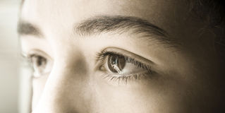 Augenseite Lizenzfreies Stockbild